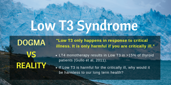 Low T3 Syndrome The tip of an iceberg-PAGE 1