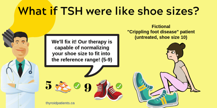 TSH-shoe-sizes-Cartoon