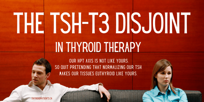 The TSH-T3 Disjoint