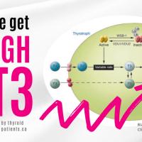 How do we get enough T3 into thyroid hormone receptors?