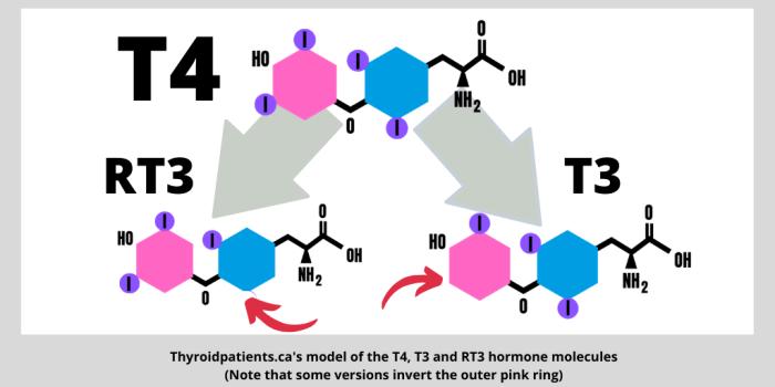T4-T3-RT3