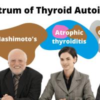 The Spectrum of Thyroid Autoimmunity