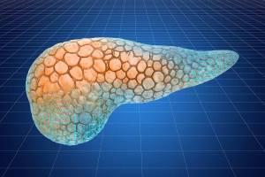 Možná příčina cukrovky 2.typu – ztučnělá slinivka!