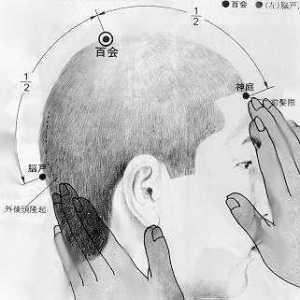Cent réunions, 百會 bǎi huì, est le vingtième point du vaisseau gouverneur.