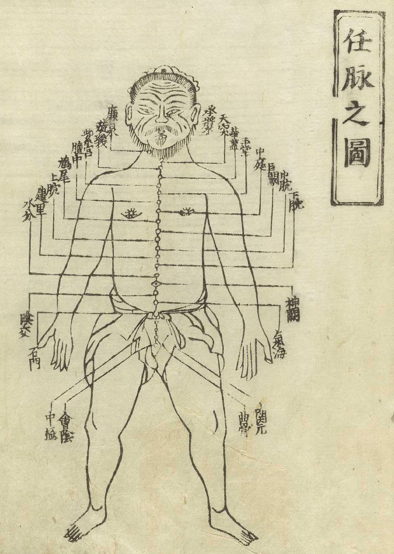Gravure sur bois à partir du Jushikei hakki de Hua Shou, 1716, montrant le vaisseau conception, 任脉 rèn mài