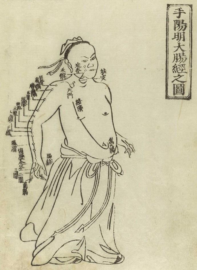 Gravure sur bois montrant le méridien du gros intestin d'un homme debout, de face, portant une jupe avec le méridien indiqué sur le bras droit et la poitrine avec des caractères chinois donnant les noms des points, de Jushikei hakki de Hua Shou, 1716