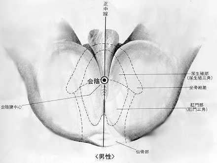 Convergence des yin, 會隂 huì yīn, est le premier point du vaisseau conception.