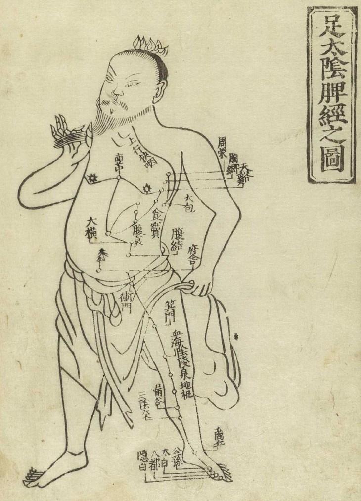 Gravure sur bois montrant le méridien de la rate d'un personnage masculin debout portant un pagne avec, indiqués sur la poitrine et la jambe avec des caractères chinois, les noms des points, du Jushikei Hakki de Hua Shou, 1716.