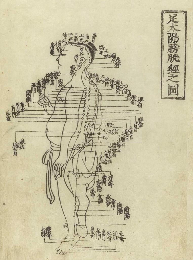 Gravure sur bois montrant le méridien de la vessie du tai yang du pied d'un personnage masculin, debout de profil, portant un pagne, avec le méridien indiqués sur les bras, le dos, les jambes et la poitrine, donnant les noms des points avec des caractères chinois, du Jushikei Hakki de Hua Shou, 1716.