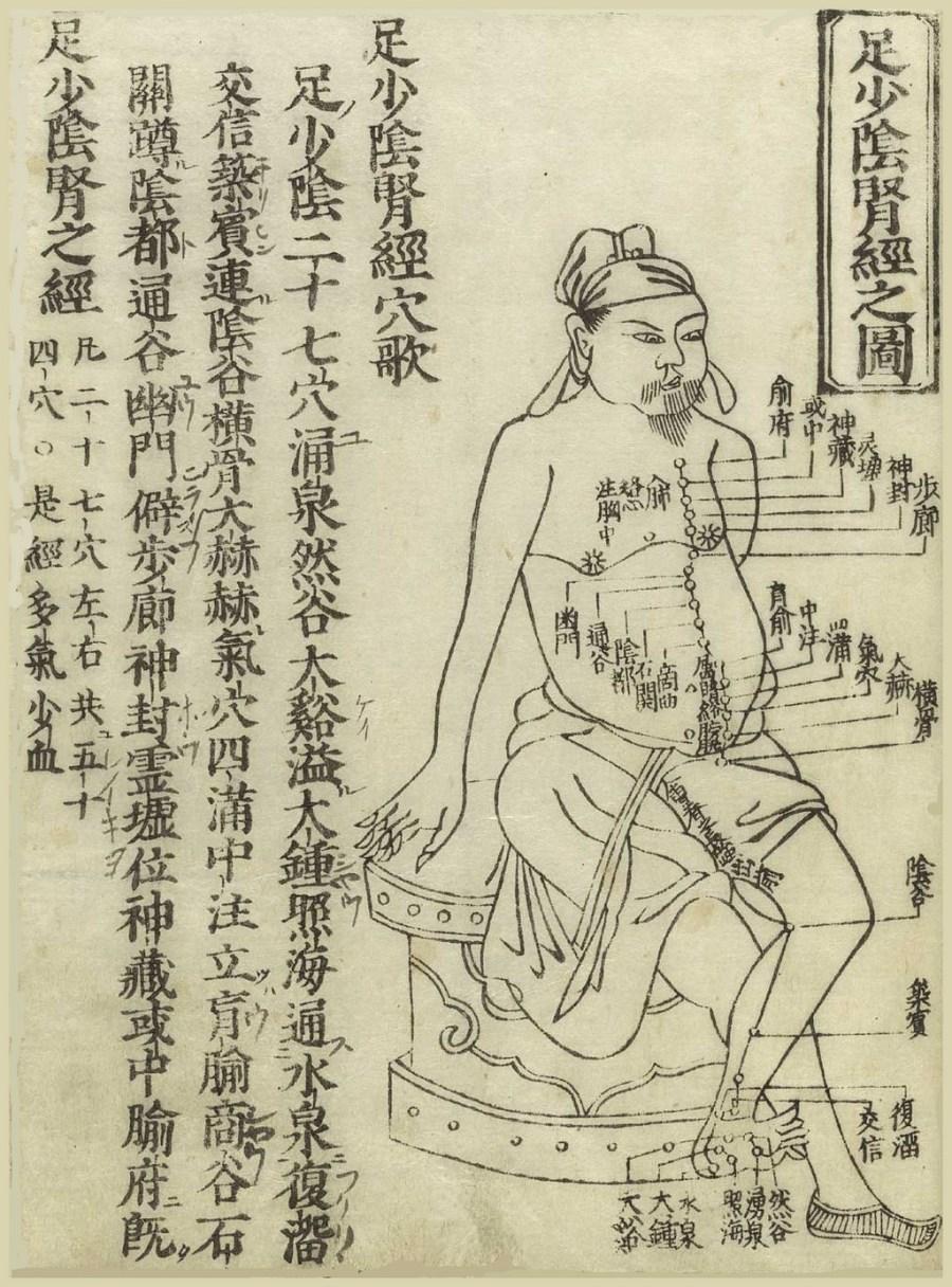 Gravure sur bois montrant le méridien du rein d'un homme assis, de profil, portant un pagne avec le méridien dessiné sur la poitrine et la jambe avec des caractères chinois donnant les noms des points, à partir du Jushikei hakki de Hua Shou, 1716