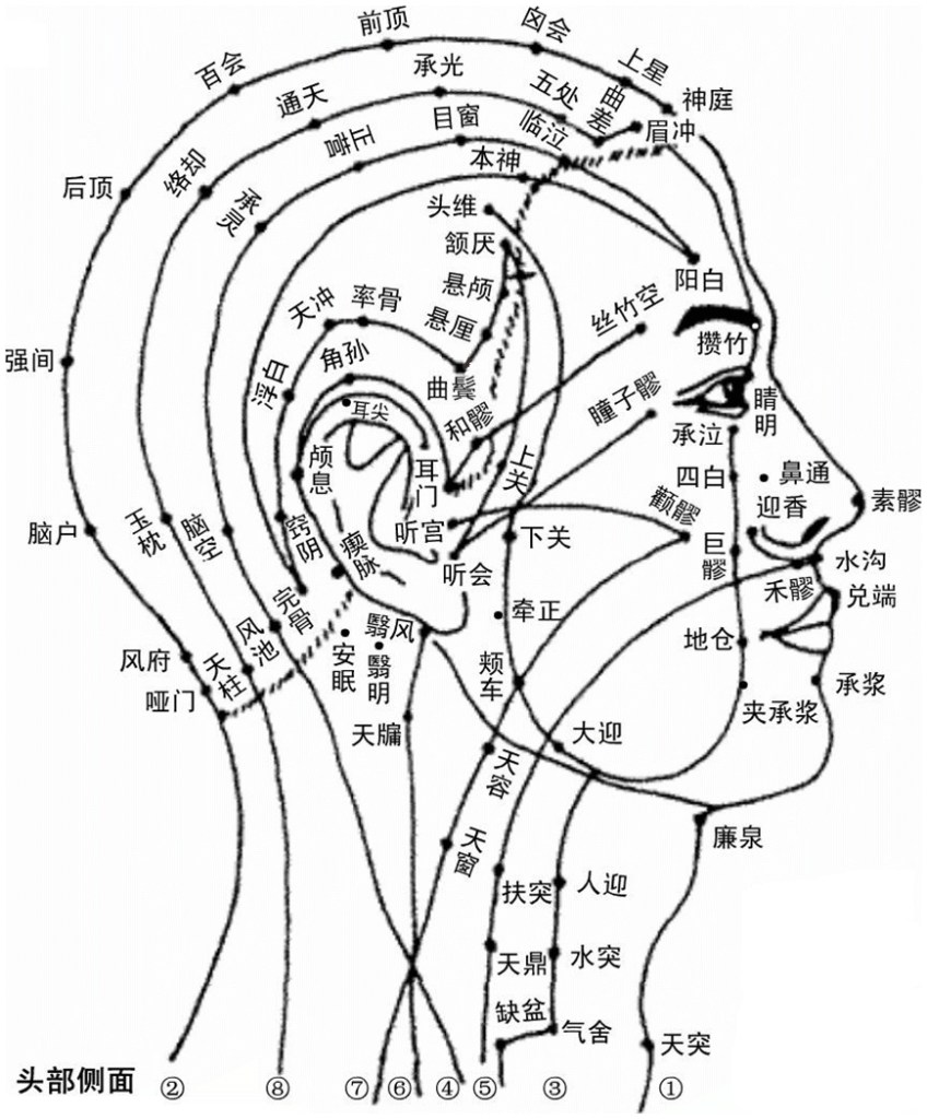 Illustration des points des méridiens de la tête, vue de profil