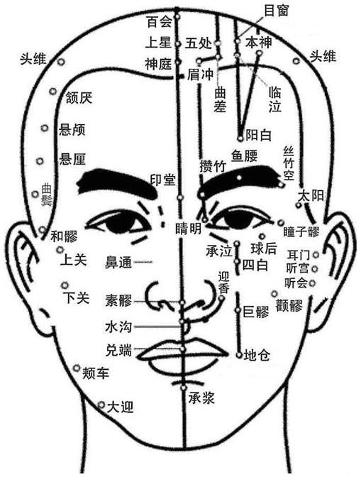 Illustration des points et des méridiens de la tête, vue de face