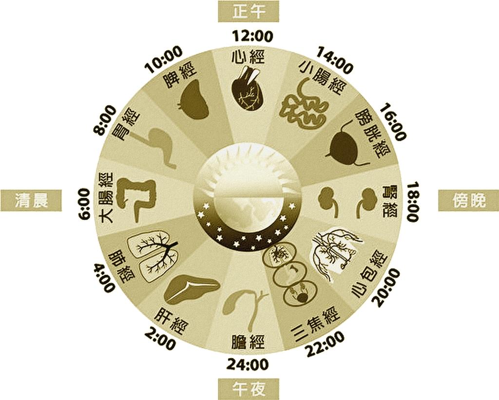 Cycle circadien