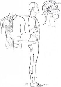 Illustration du méridien de la vésicule biliaire