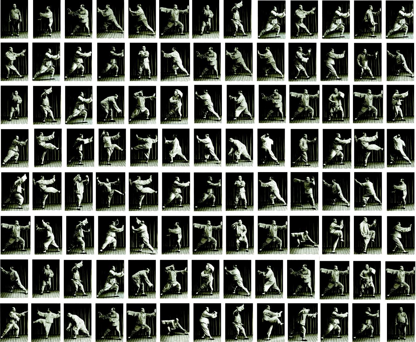 La forme Yang en 103 postures