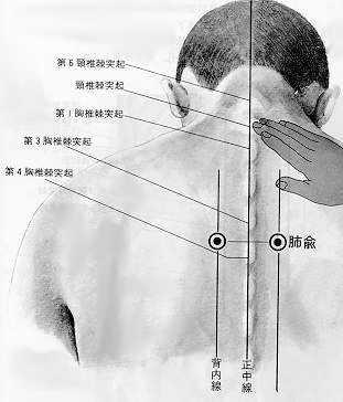 Assentiment du poumon, 肺俞 fèishù, est le treizième point duméridien de la vessie.
