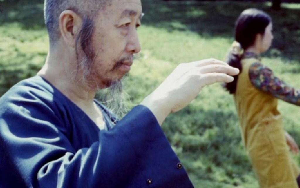 Pourquoi pratiquer le taijiquan en ces temps de confinement ?