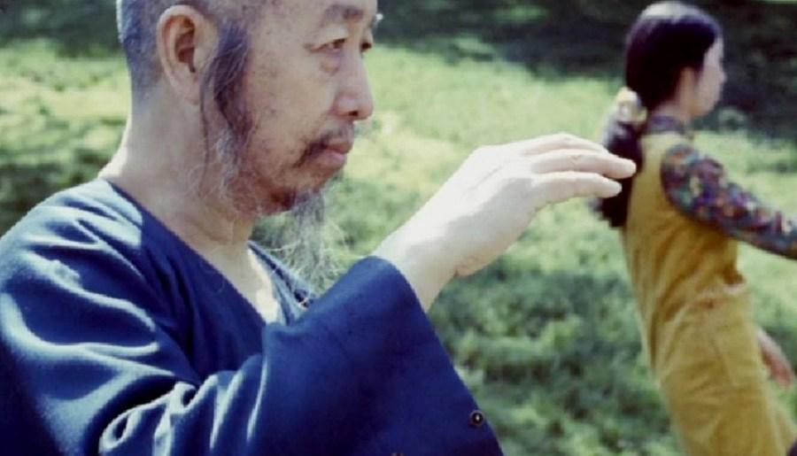 La main du professeur Cheng Man Ching