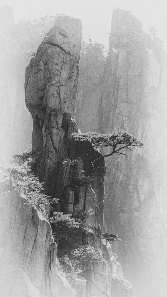 La sentinelle, photographie de Lydia Goetze