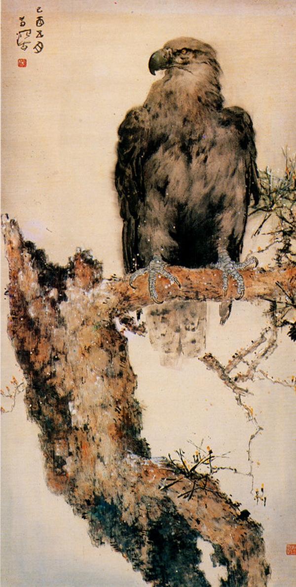 Aigle, Yang Shanshen