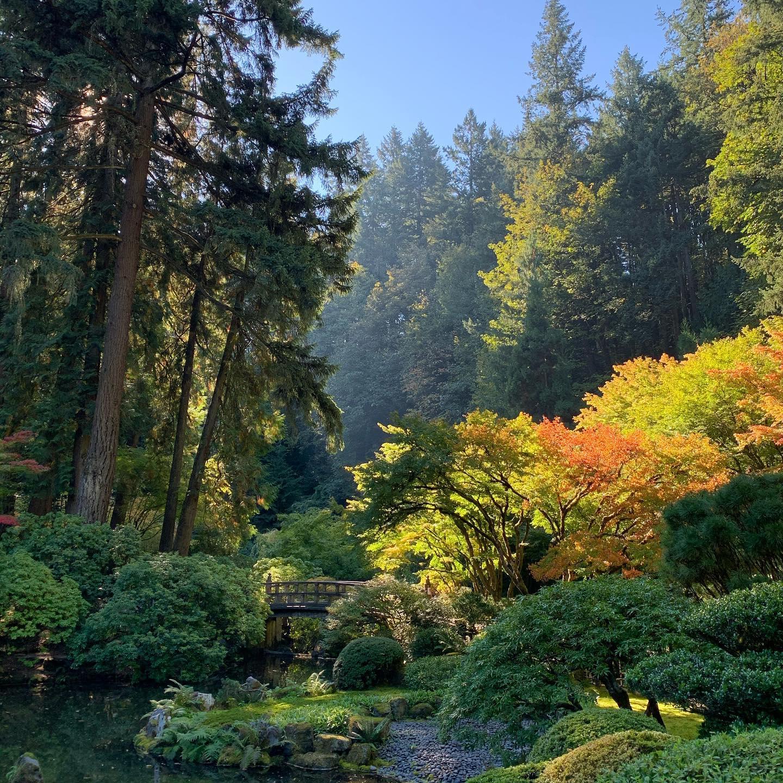 Le jardin japonais de Portland