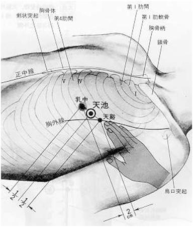 Réservoir céleste est le premier point du méridien maître du cœur