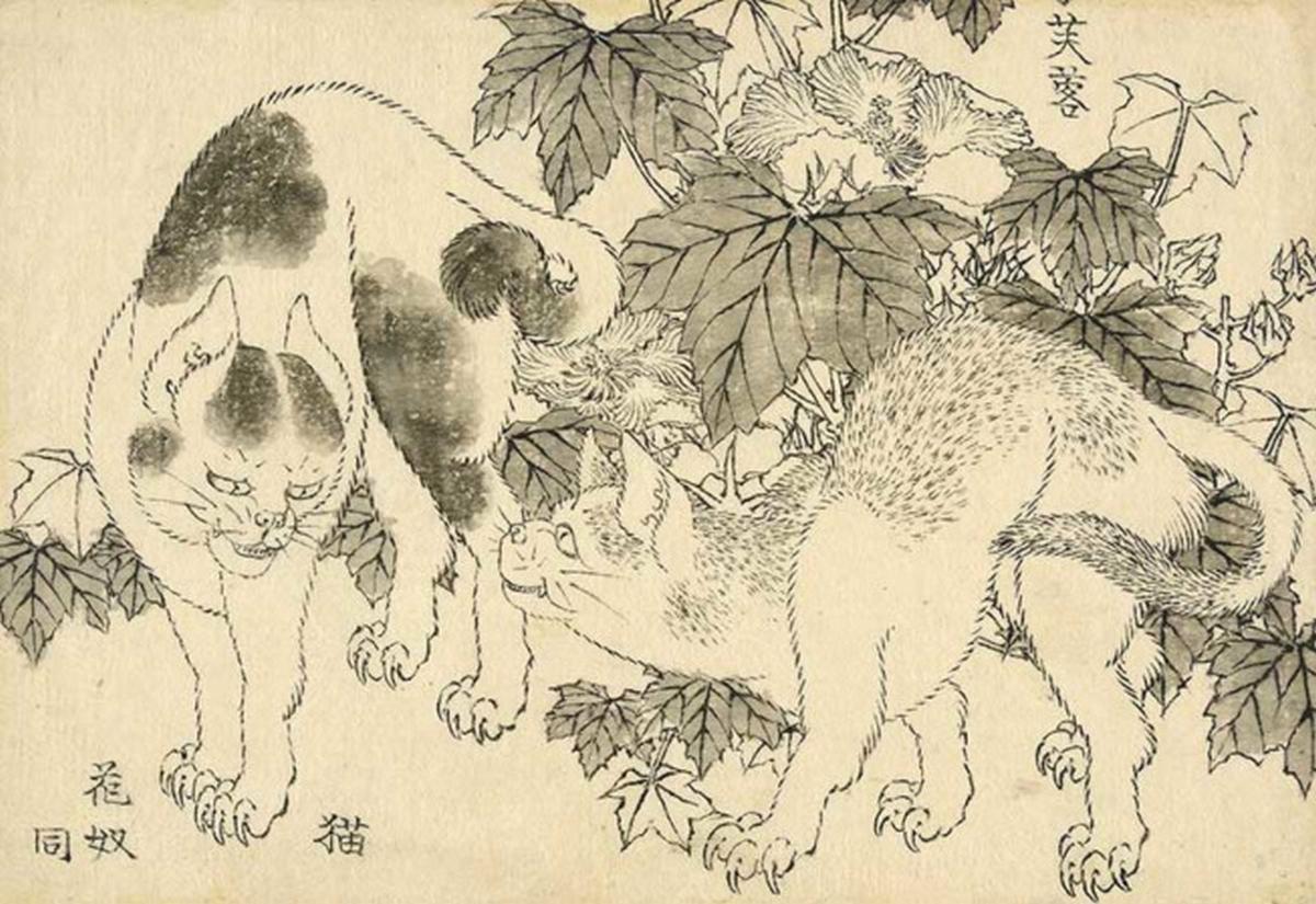 Chats et hibiscus, 1829, Hokusai