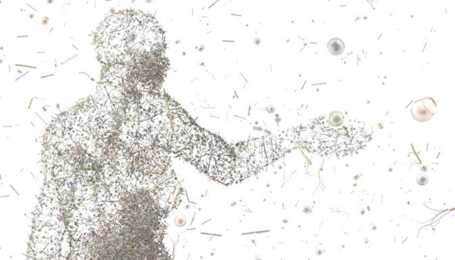 Illustration de nos bactéries et nous