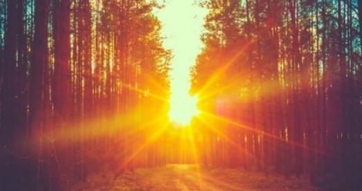 Cahaya Matahari Mempengaruhi Warna Objek