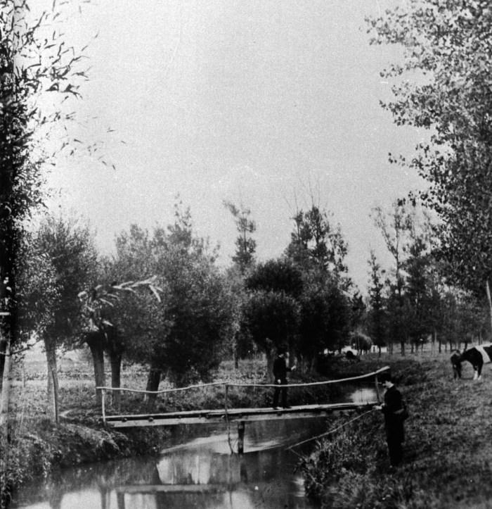 Jeker bij Champ Elyseeweg St.Pieter 1898