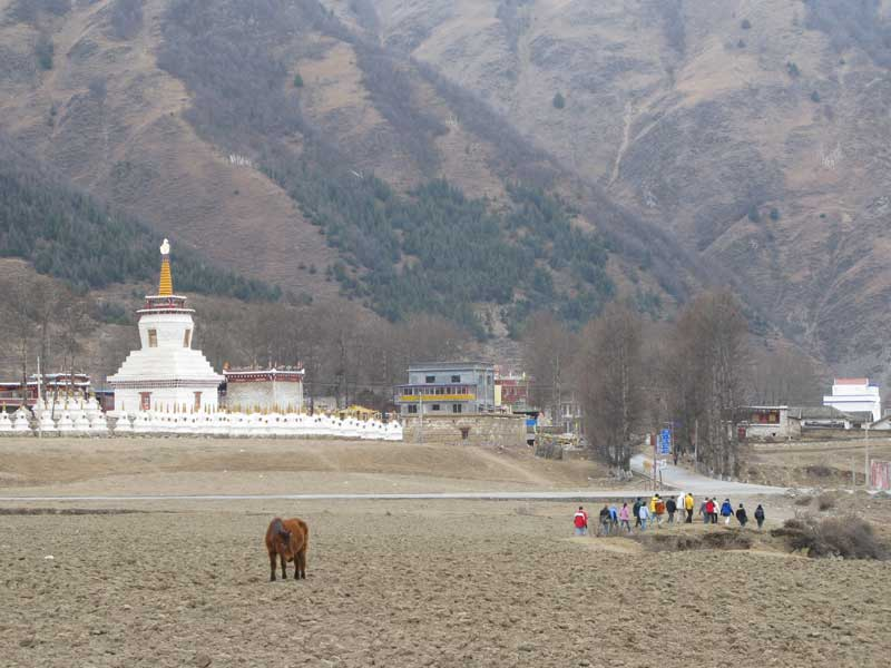 Tibetan language