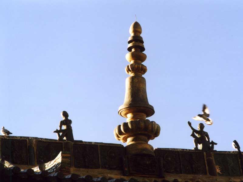 Shalu-rooftop