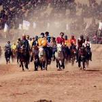 qumarleb county horse racing