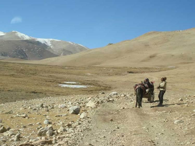 trekking support crew