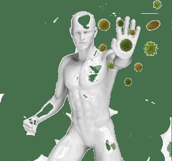 """Натуральный иммуномодулирующий чай """"Культура Тибета"""""""