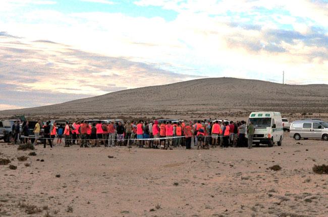 Vacunados 2.004 conejos durante las primeras 'sacas' de Fuerteventura