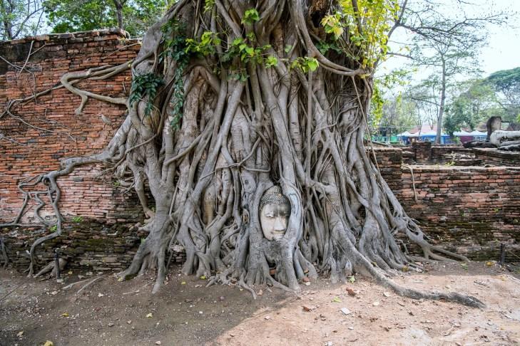 Que ver Ayutthaya 5