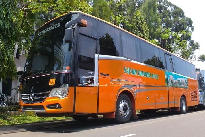 agen Tiket Bus Safari Dharma Raya