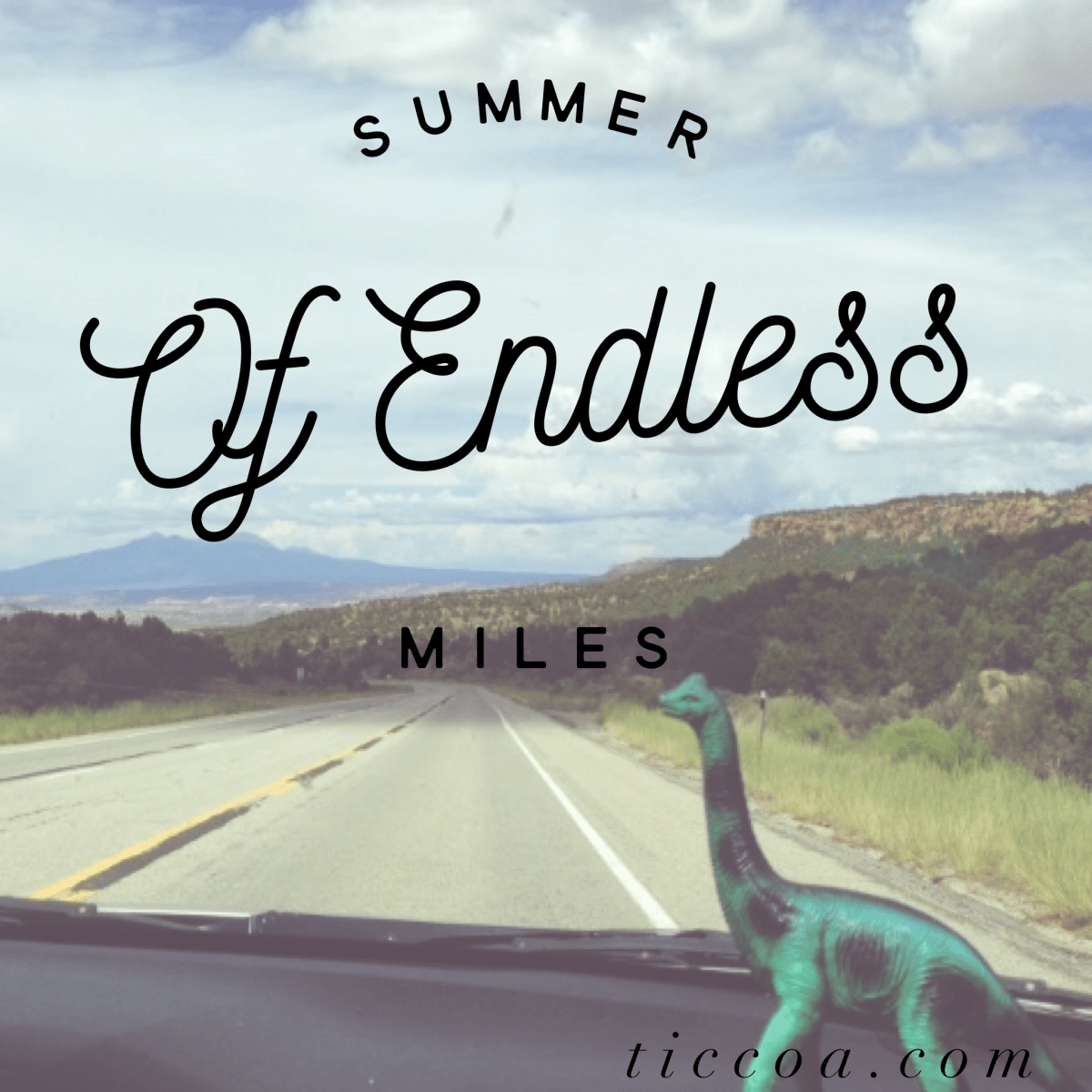 Bluebonnets and Best Friends: The Summer of Endless Miles, Day 1