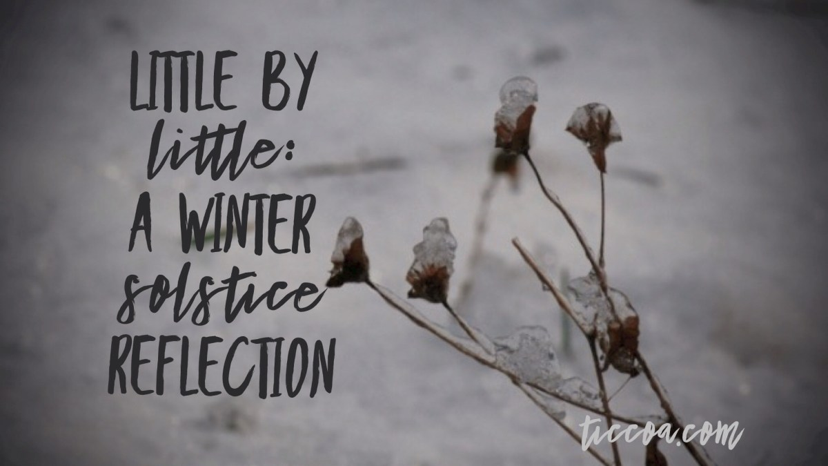 Little by Little: A Winter Solstice Reflection