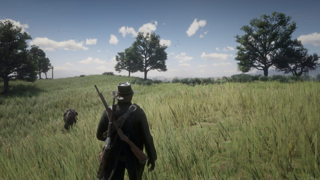 Beginner's Guide to Red Dead Redemption 2