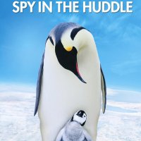 Film | Penguins Spy in the Huddle (2013)