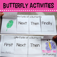 Learning about the Life Cycle of Butterflies