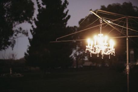 rustic-bush-wedding5