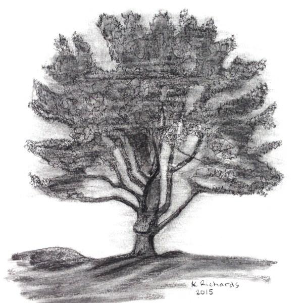 Tree Drawing Ticklehead