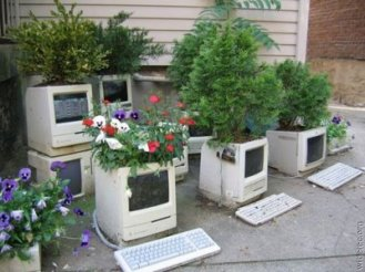 Vasos-para-plantas-imagem-1