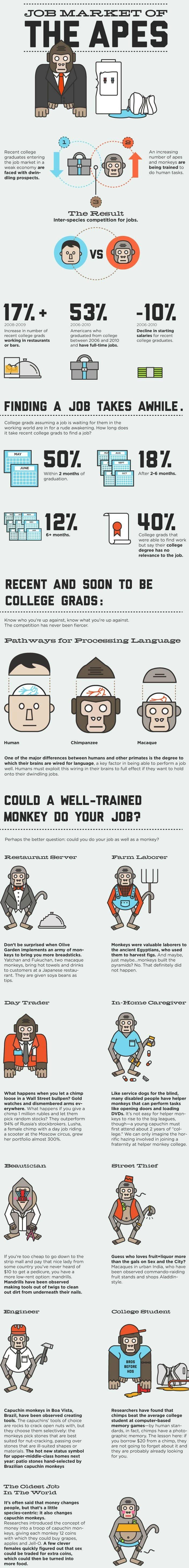 ¿Puede un simio hacer tu trabajo?