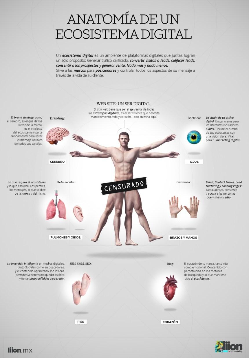 Anatomía de un Ecosistema Digital