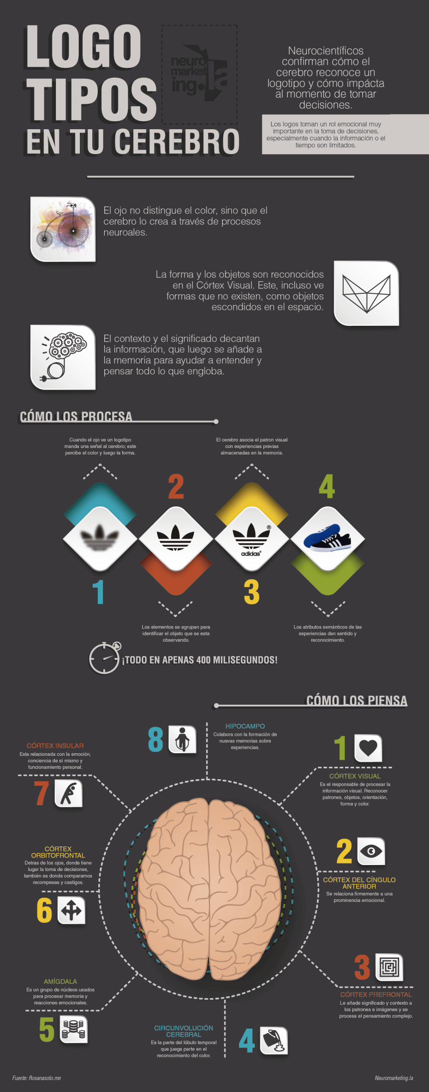 logos-neuromarketing-infografia