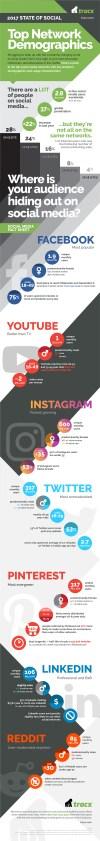 Demografía de las Redes Sociales